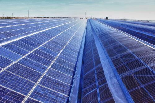Trina solar colabora en la creaci n de un invernadero - Soltec murcia ...