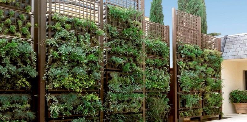 Crea tu jard n vertical 100 personalizable con ag colors for Crea tu jardin